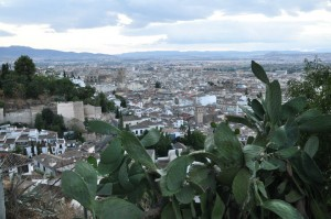 Granada (135)